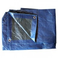 Bâche Bleue et Verte Polyéthylène 80g dimensions 10x 15 m