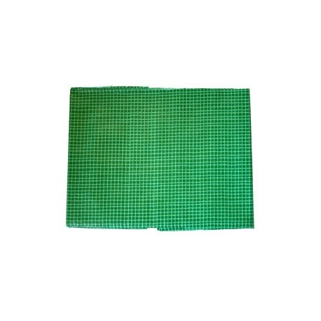 Bâche Verte Polyéthylène 160g dimensions 3 x 4 m